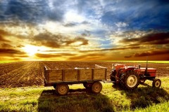 Agriculture news image